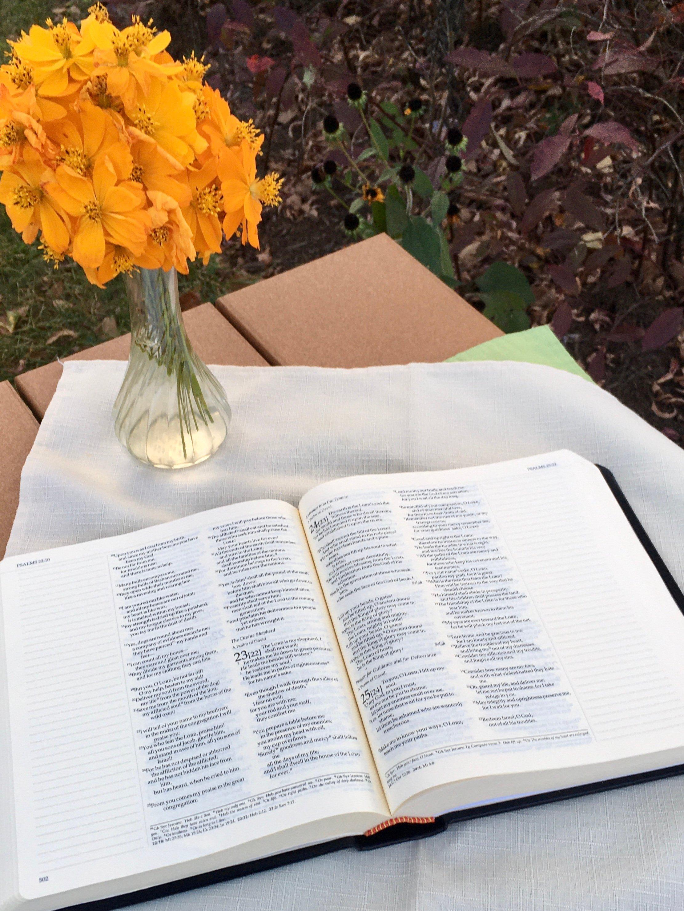 2020 1117 CAstfalk Ignatius Bible Interior