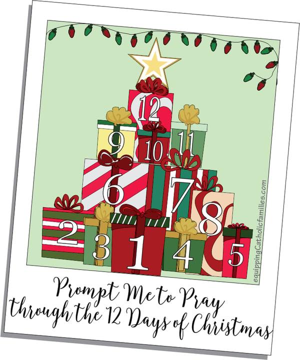 2020 1228 MMcConkey 12 Days of Christmas