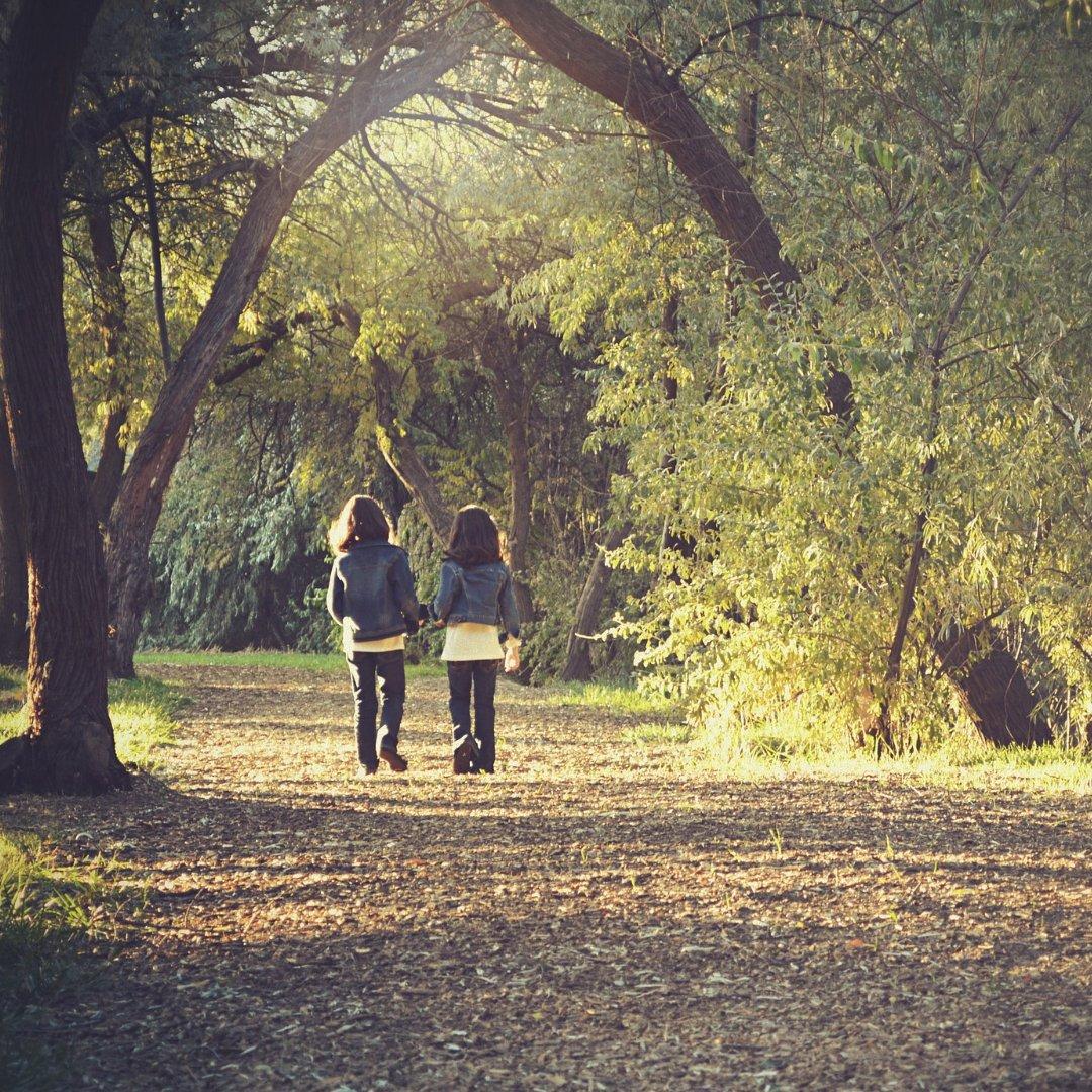 2 little girls walking along sunlit path under trees