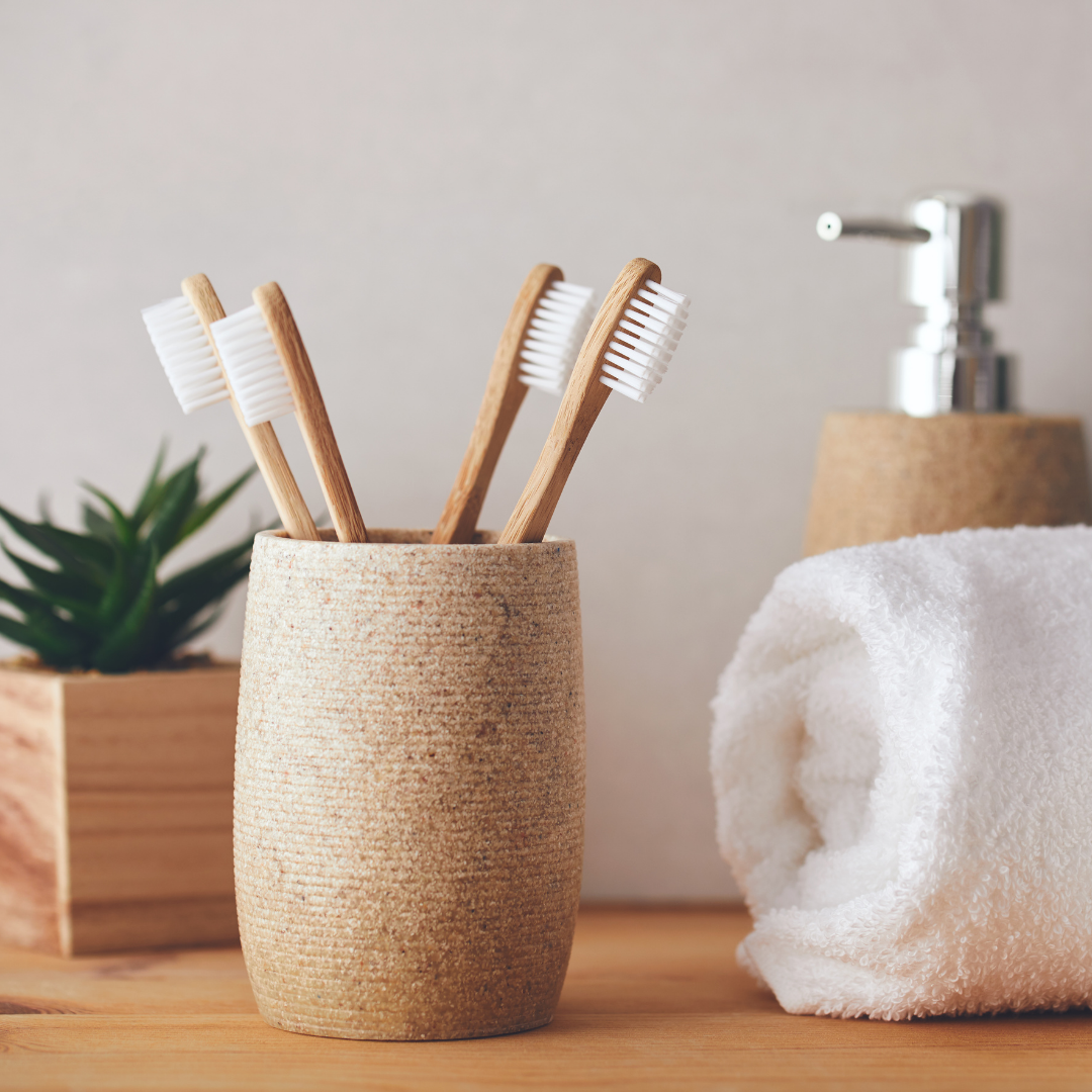 plant, toothbrushes, soap, and towels on bathroom counter