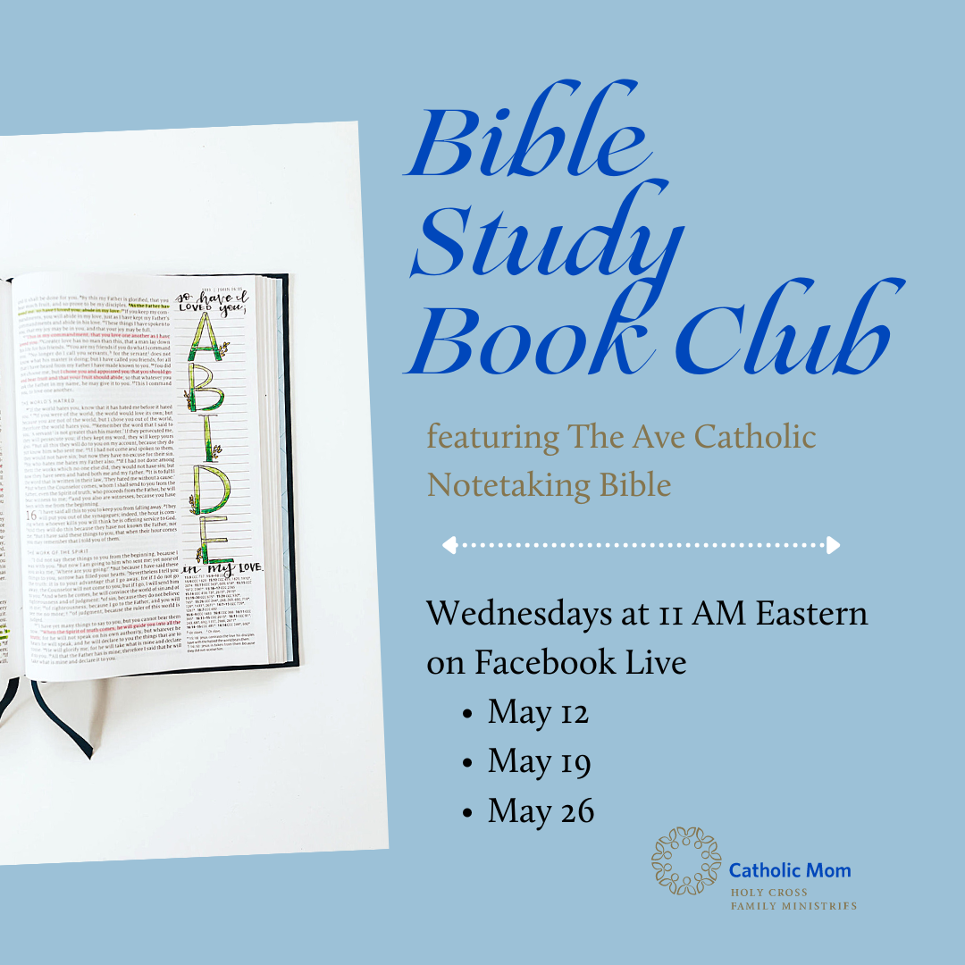 Bible Study Book Club with dates - IG