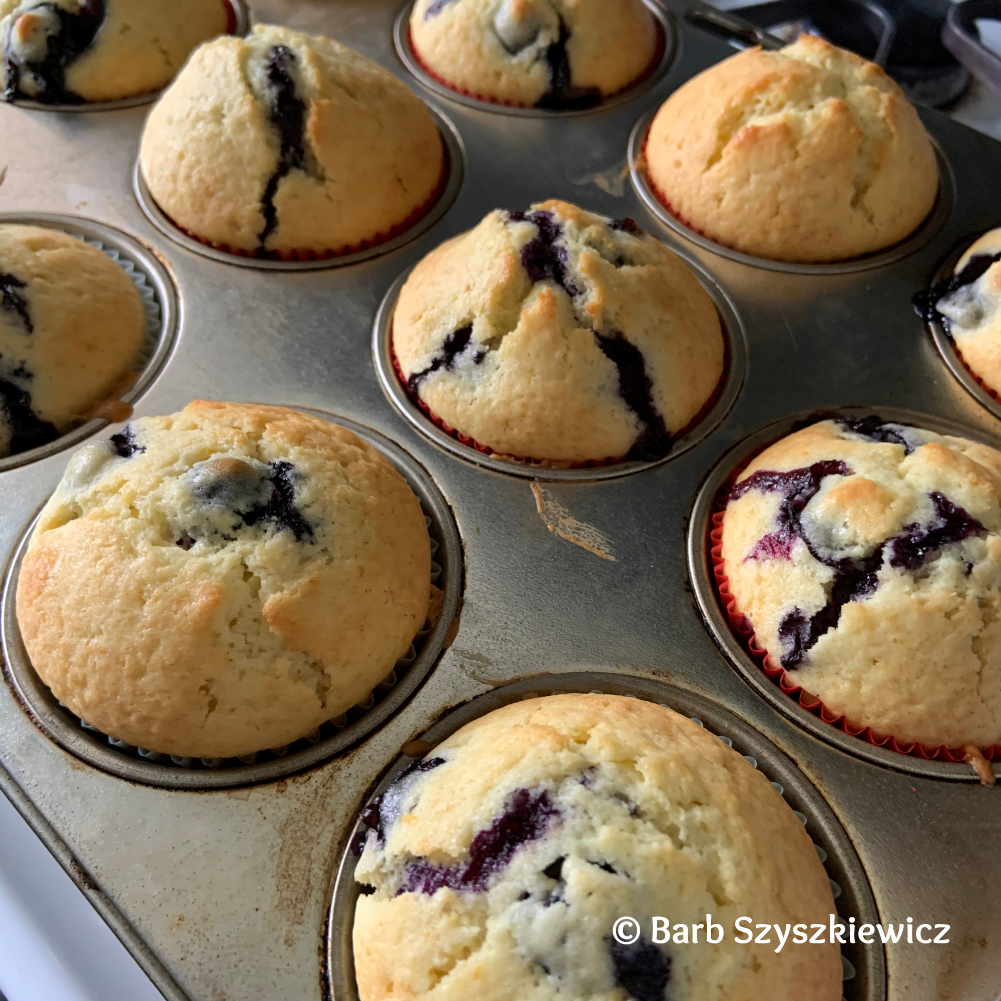 Blueberry Muffins 2 -BSzyszkiewicz