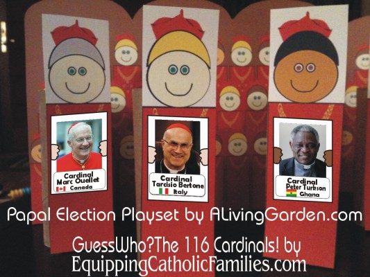 116 Cardinals with election play set