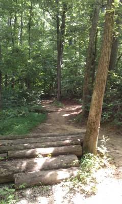 My Mountain Biking Experience