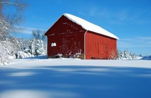 Battling Snow