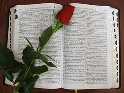 Daily Scriptures Reflection