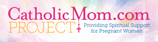 CatholicMomProj banner
