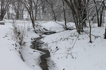 IMG_0091 (2) melting creek