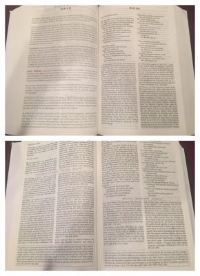 didache bible inside
