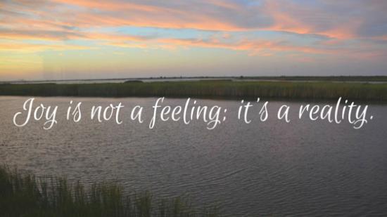 Joy is not a feeling (2)