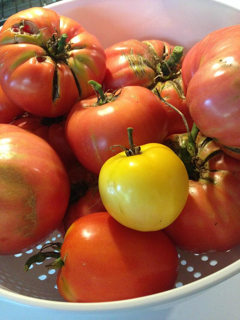 """""""Meatless Friday: Easy Slow-Cooker Ratatouille"""" by Stephanie Landsem for CatholicMom.com"""