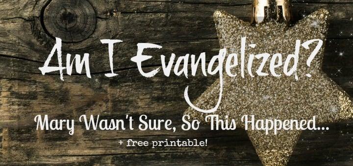 Mary Evangelizes - FI