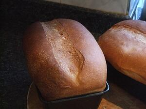 Miracle of the Loaves 18th Sunday OT