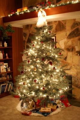 Oh Christmas Tree, Oh Christmas Memories