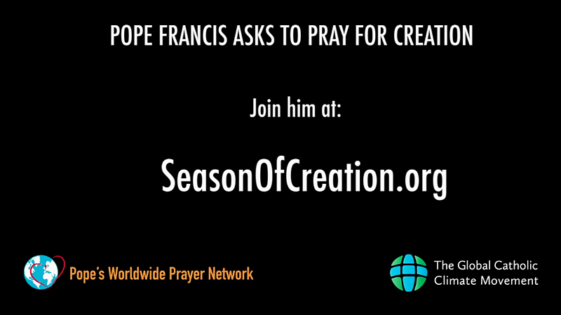Pope Francis asks us to pray for creation on 9/1 (CatholicMom.com)