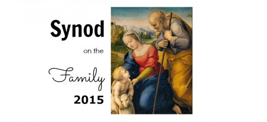 Synod on the Family header