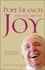 cover-pope francis call to joy
