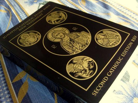 St. Ignatius Bible Study Series