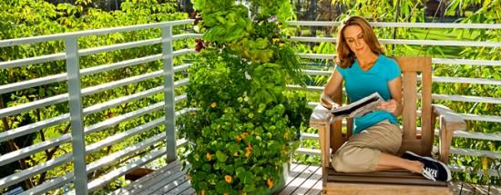 pho_tower_garden_porch