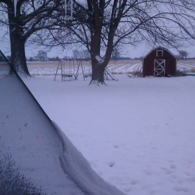 The view from my back porch this morning.