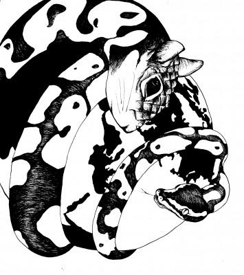 Illustration by Ana Maria Rocha