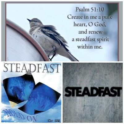 steadfast collage