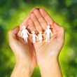 stock-photo-36814094-paper-family-in-hands-over-green-sunny-background-family-concep