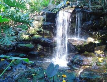tropical waterfall MGD©