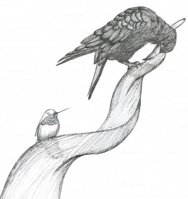 Illustration by Ana Rocha