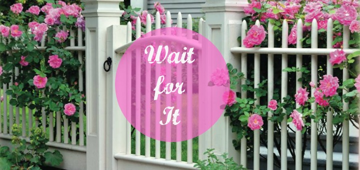 """""""Wait for It"""" by Shannon Claire Morelli (CatholicMom.com)"""