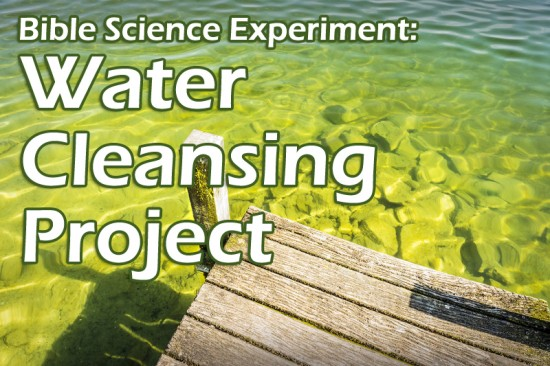 Science Experiment: Water Cleansing Project