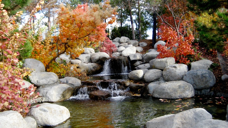 """""""A Watered Garden"""" by Colleen Spiro (CatholicMom.com)"""